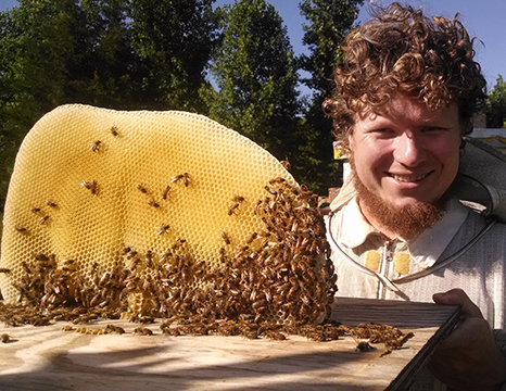 Ryan Williamson Beekeeper