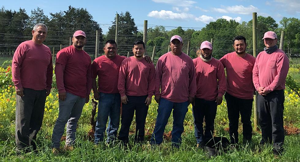 Ramiiisol winegrowers